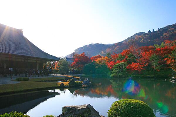 天龍寺の池