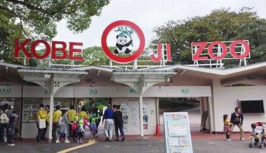 """パンダが見れる動物園""""神戸私立王子動物園""""へ行ってきました"""