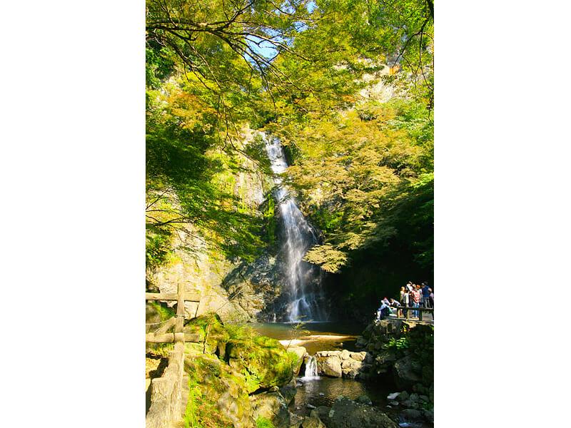 箕面の滝縦写真