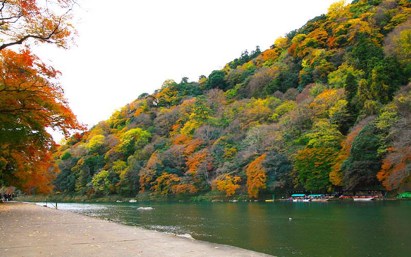 桂川沿い2