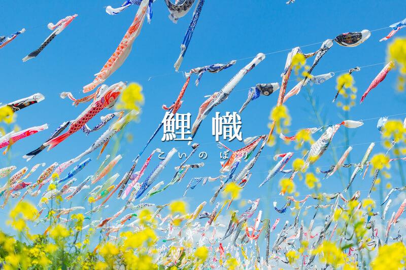 優雅に泳ぐ鯉のぼりを見ることができる夙川と高槻の桜堤公園