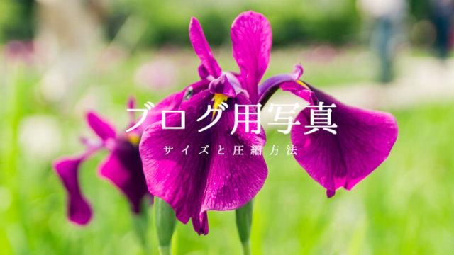 ブログ用写真画像