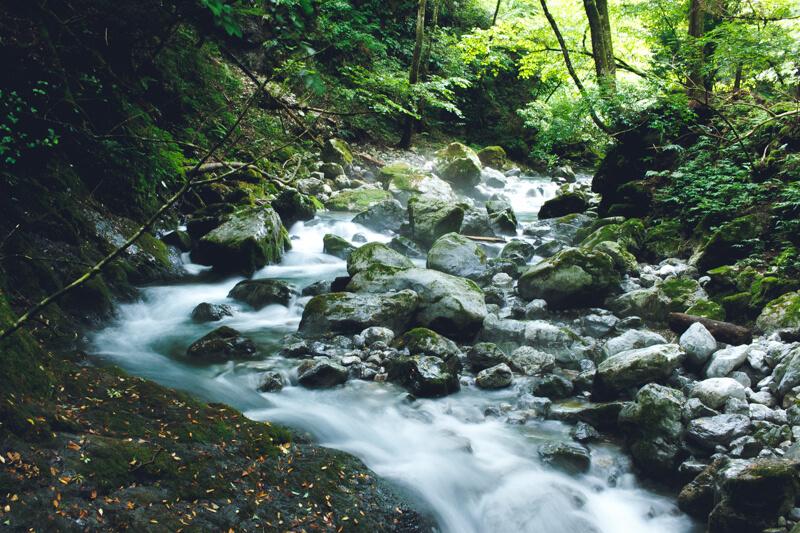 川の流し撮り