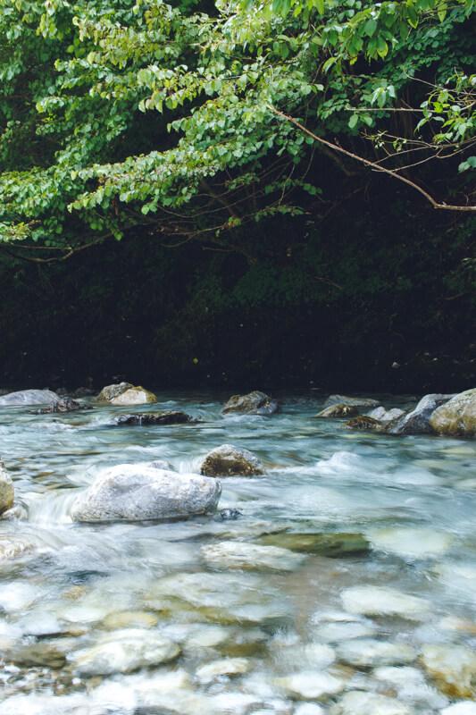 安養寺近くの芹川2