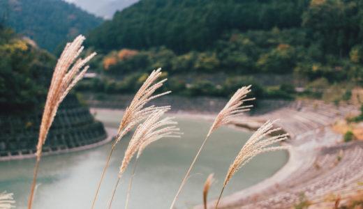 白川渡オートキャンプ場は秋がオススメ!【キャンプレポ】