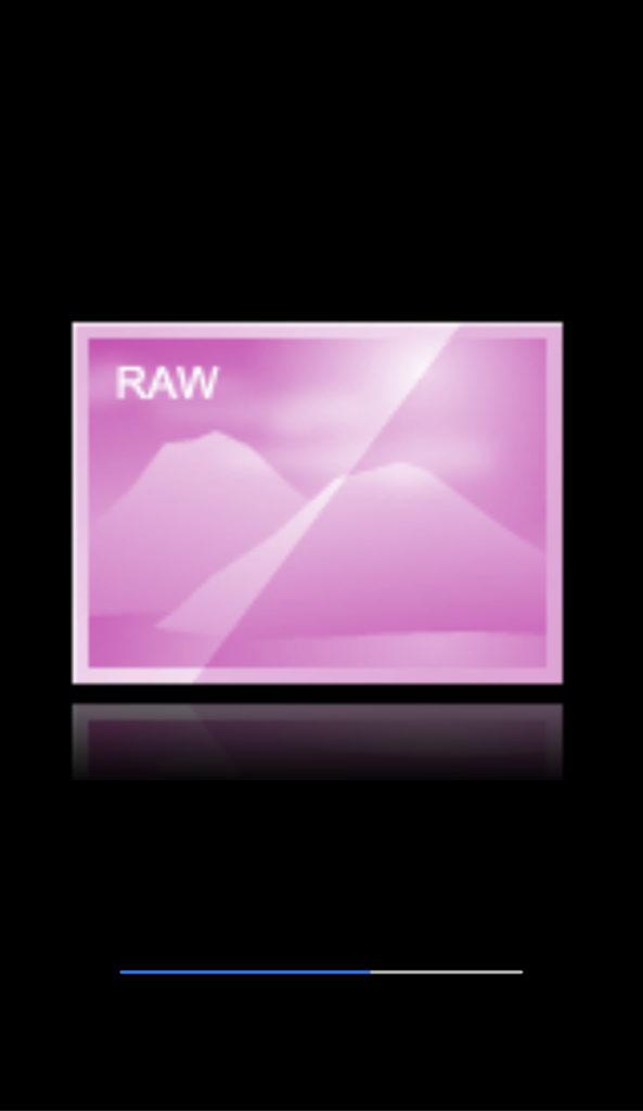 RAW画像のプレビュー