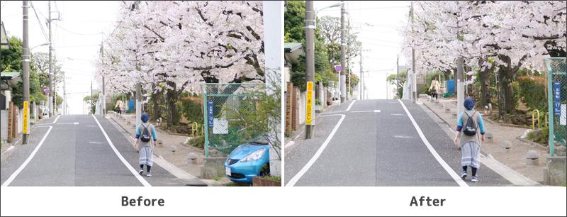 トリミング前の写真と後の写真
