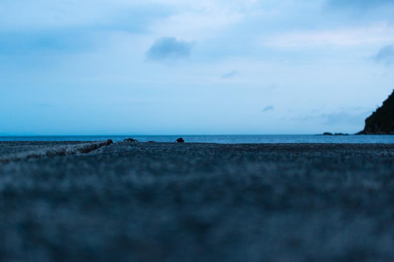 防波堤写真4