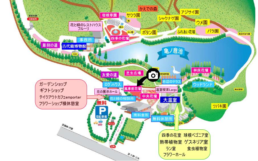 兵庫県立フラワーセンター撮影スポット1