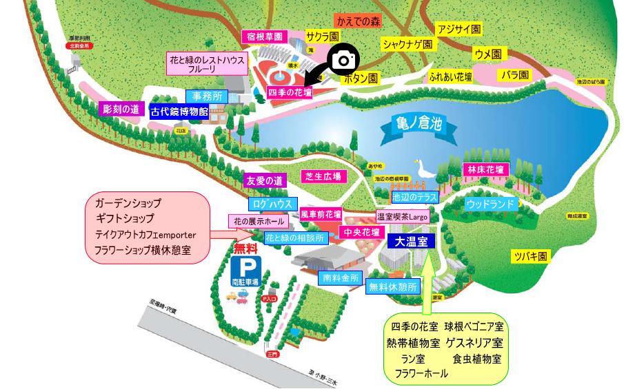 兵庫県立フラワーセンター撮影スポット2