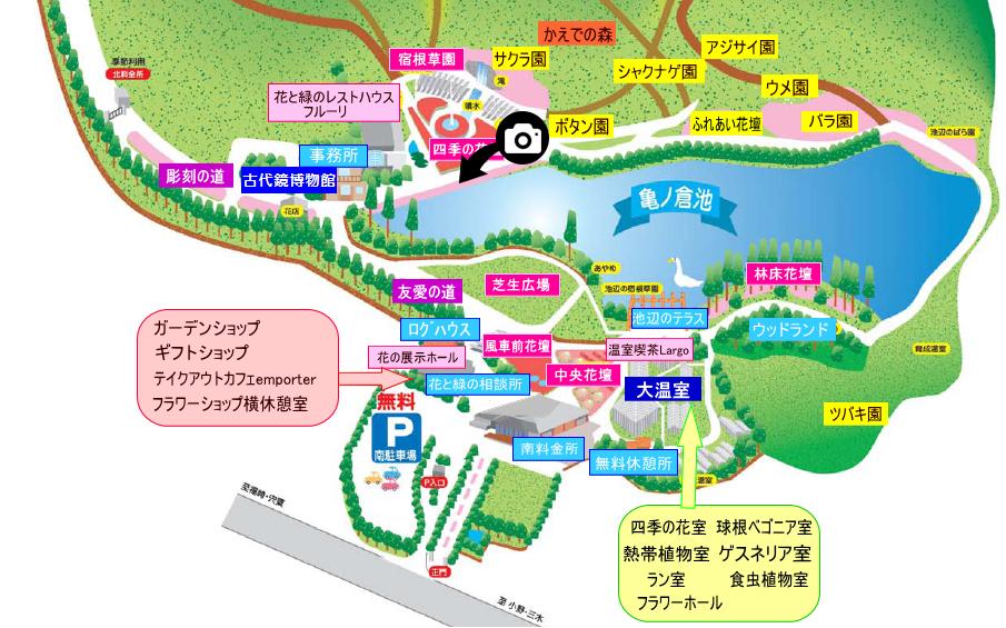 兵庫県立フラワーセンター撮影スポット3