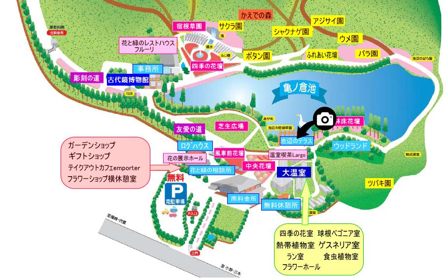 兵庫県立フラワーセンター撮影スポット4