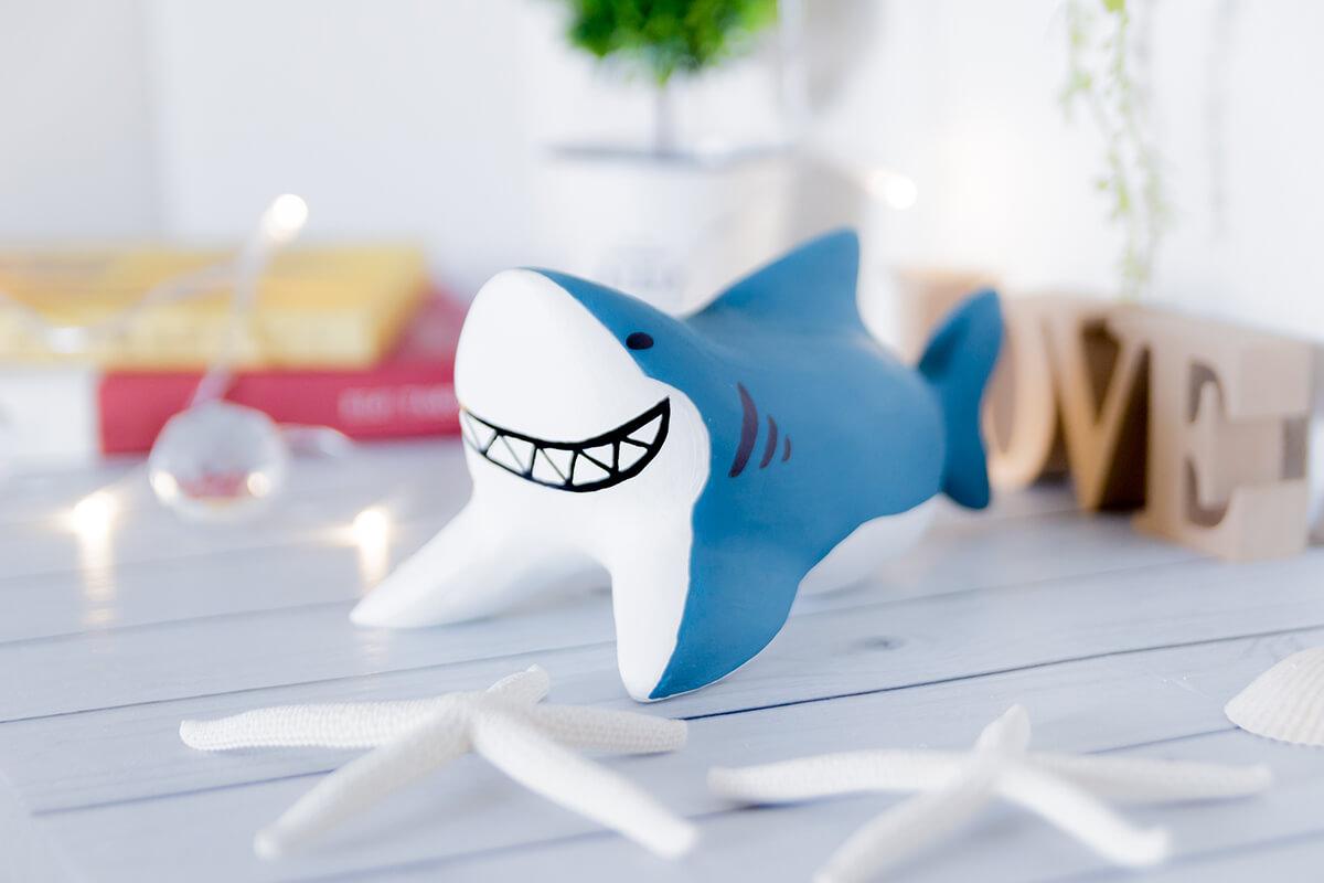 サメのイメージ写真4