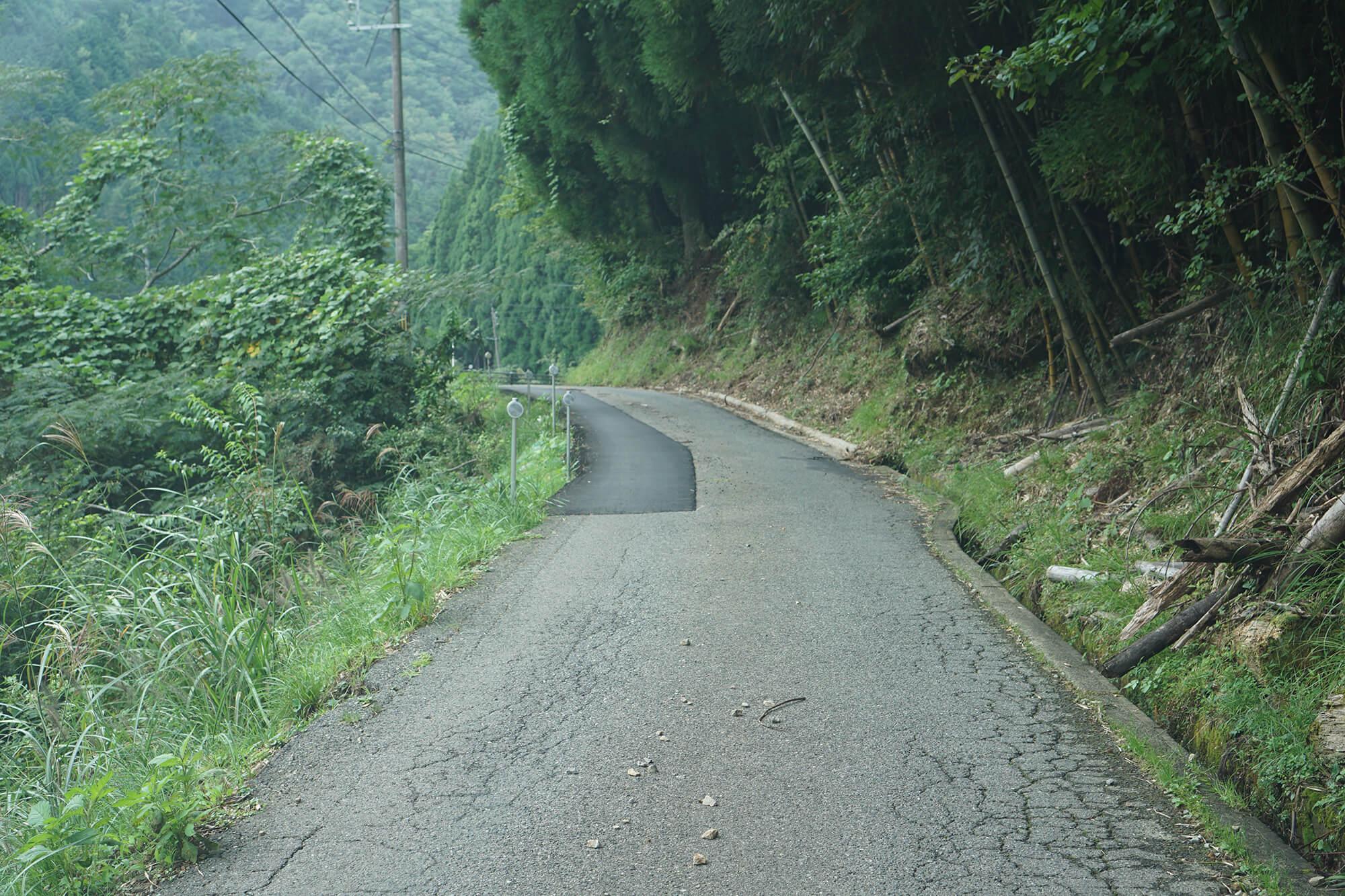 山崎アウトドアランドへの道の写真2